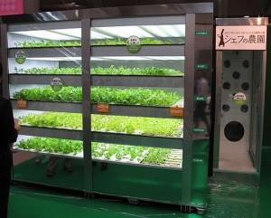 Plant Vending maching