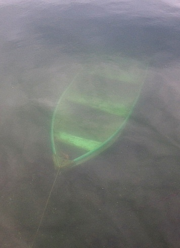 Submerged row boat