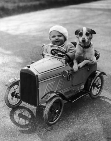 Baby and dog in car