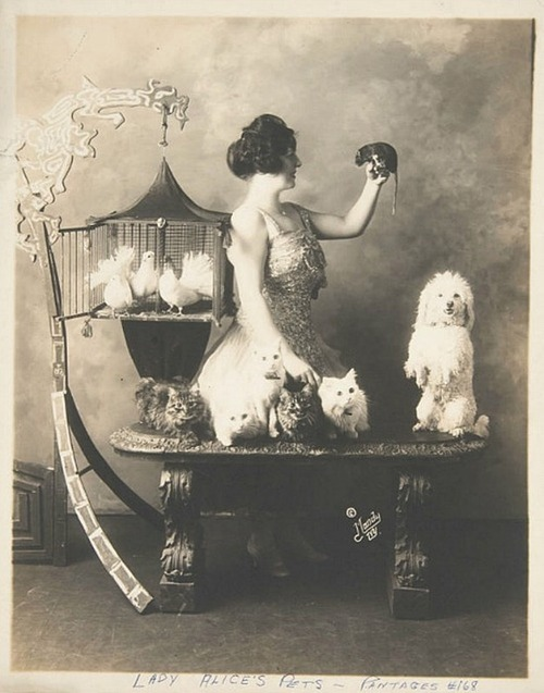 Woman posed with several pets