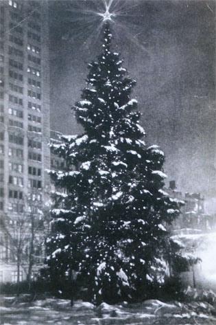 """The """"Tree of Light"""""""