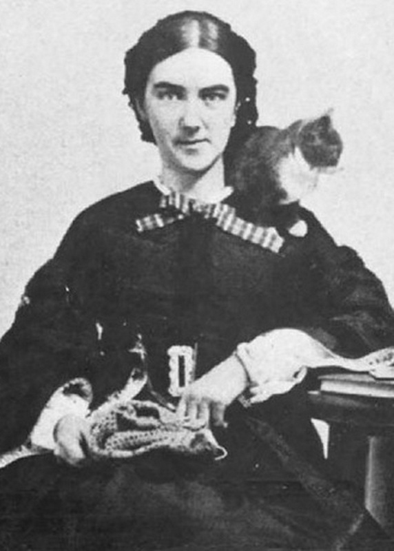 Ellen Swallow with cat & knitting