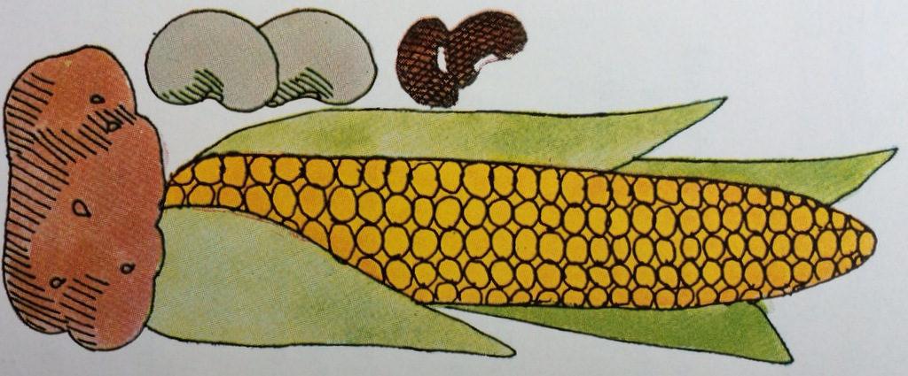Mazola Diet Plan, corn, potato, beans
